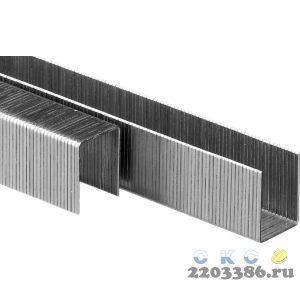 ЗУБР 16  мм скобы для степлера тонкие широкие тип 80, 5000 шт