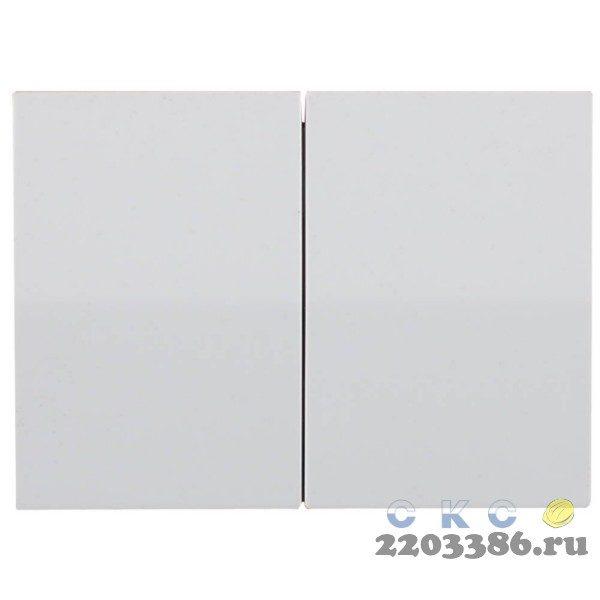 """Выключатель СВЕТОЗАР """"ЭФФЕКТ"""" двухклавишный, без вставки и рамки, цвет светло-серый металлик, 10A/~250B"""